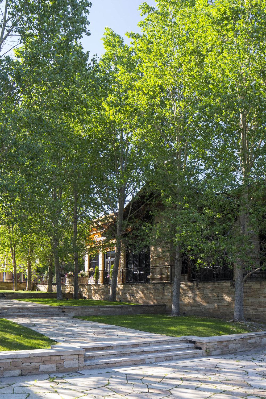 "<img src=""studioINSITE_Village_at_Castle_Pines""alt=""Shopping District_CastlePines_Colorado_Shopping_Mall_Streetscape_Urban Design_Landscape Architecture_Streetscape""title=""Village at Castle Pines""/>"