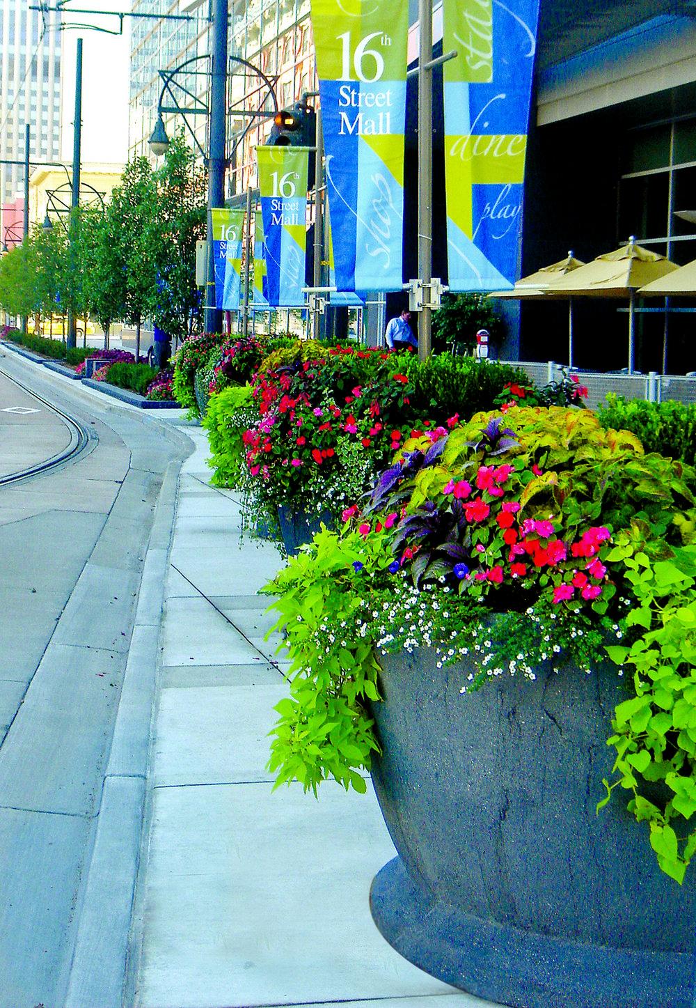 """<imgsrc=""""studioINSITE_Denver_Hyatt_California_St_Streetscape""""alt=""""Denver_Hotel_Urban Design_ Landscape Architecture_Hyatt Regency_Denver_Hotel_Urban Center_Light Rail, Convention Center, Urban Design""""title=""""Hyatt Regency Denver""""/>"""