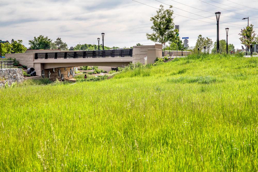 """<img src=""""studioINSITE_Boulder_Junction_Place_Greenway-grass_grass""""alt=""""Boulder, Junction Place, Bike Trails, Transite Depot, Bridge, Streetscape, Greenway, Landscape Art, Art, Public Outreach, Landscape Architecture, Urban Designtitle=""""Boulder Junction Place""""/>"""