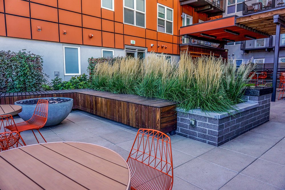 """<img src="""" studioINSITE_The_Douglass_Courtyard_Seating """"alt=""""Urban Living, Multifamily Courtyard, Amenity Deck, Fire Pit, Grill Area, Shade Structure, Fireplace, Landscape Architecture, Luxury Living, the Douglas, Denver, CO, Colorado Courtyards, Amenity Spaces, Great Courtyard Designs  """" title=""""The Douglas  """"/>"""