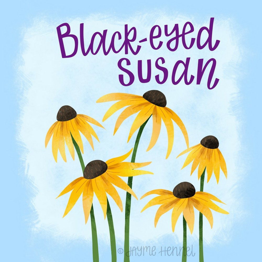 20- black eyed susan.JPG