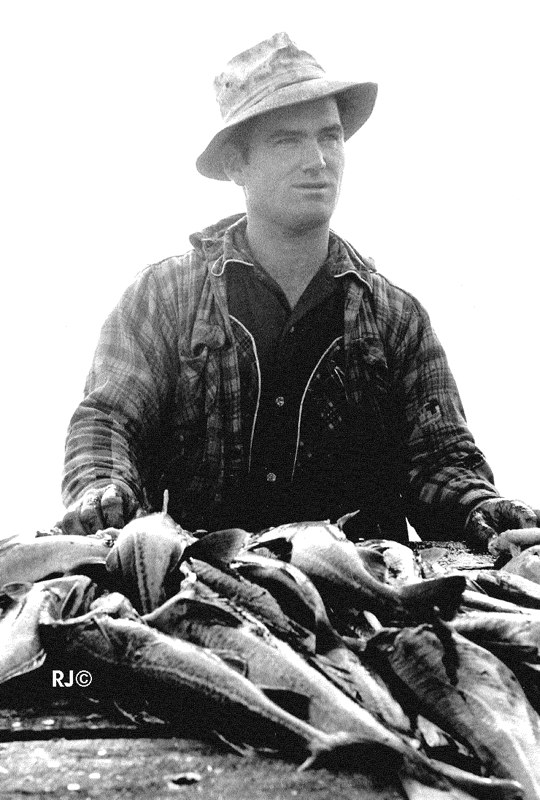 Man with fish - Gaspé, 1954