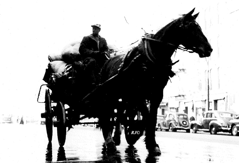 Horse and buggy, Manhattan, 1948
