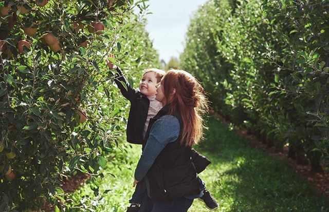 We live for Octobers 🍁🍎 . . . #appletree #orchard #fall #myworld #applepicking #farm #adventures #explore #becreative #october #octoberdays #instaphoto #photooftheday #fallweather #somanyfeels #happiness #pnw #oregon #instadaily #exploretheworld