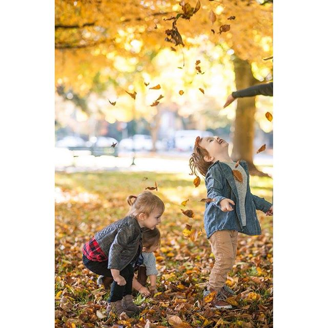 Little ones and their leaves 🍁🍂 . . . #fall #hellofall #oregon #pnw #happiness #love #littles #momlife #perfect #keepthemlittle #staylittle #sweetbabes #photooftheday #autumn #instaphoto #instalove #momsofig #toddlersofig
