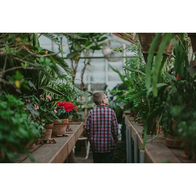 G R E E N H O U S E 🌿 . . . #greenhouse #plants #plantlife #winter #oregon #pnw #embracelove #letthembelittle #family #green #goodvibes #nikon #photography #photog #photooftheday #staylittle #adventures #childhoodunplugged #momlife #explore #exploremore #positivity #happyplace