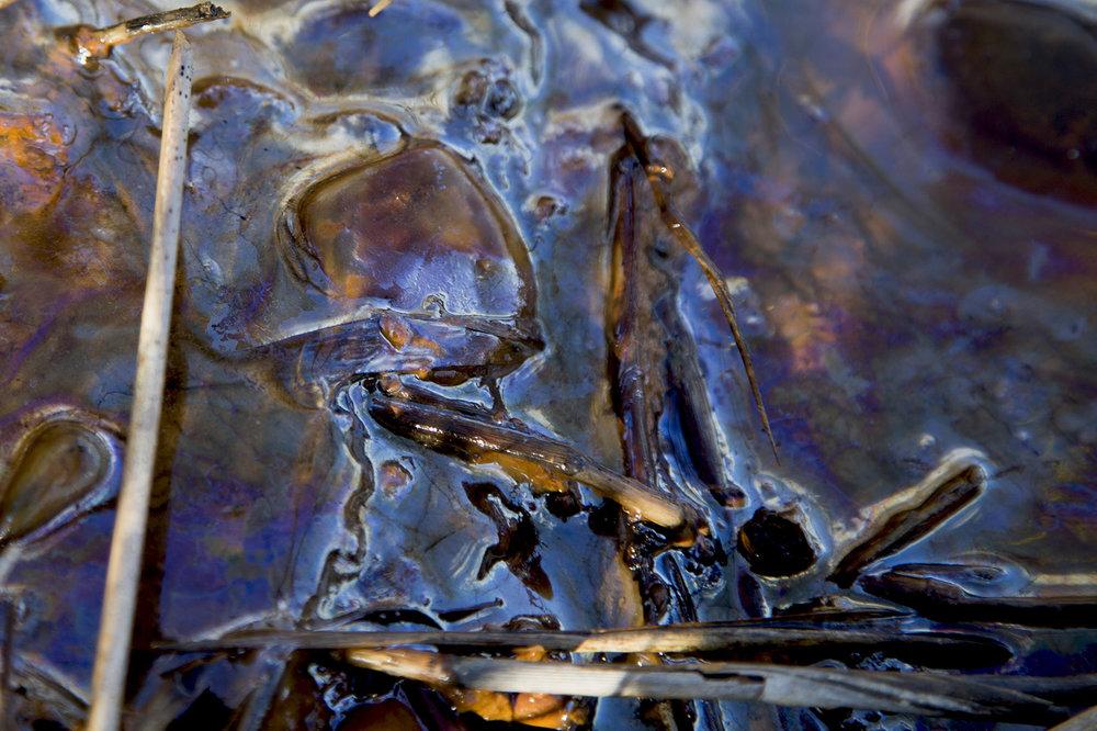 paige-middeton-untitled-semi-zine-photography-submission-6.jpg