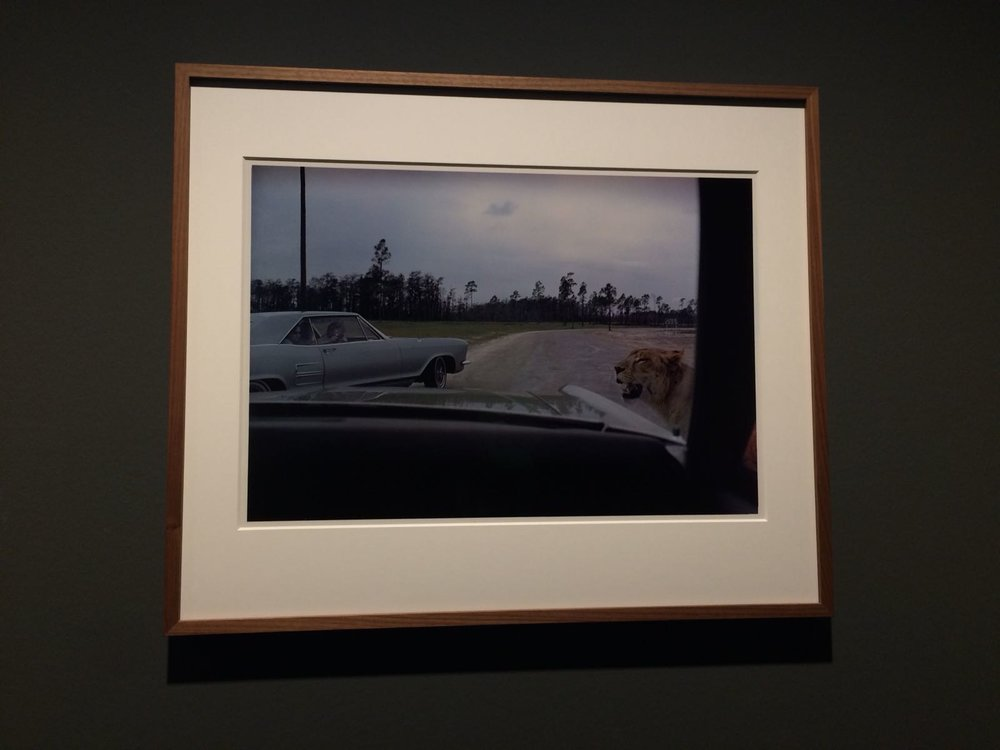 Semi Zine reviews the Joel Meyerowitz retrospective at C/O Berlin, curated by Felix Hoffman.