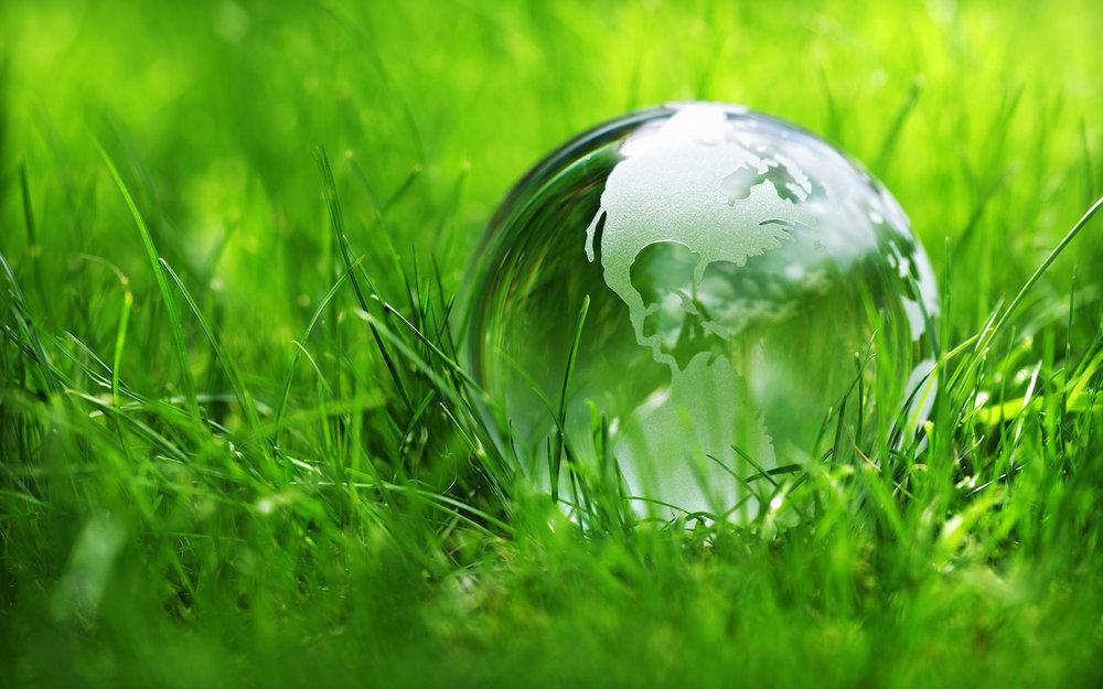 The Green Initiative -