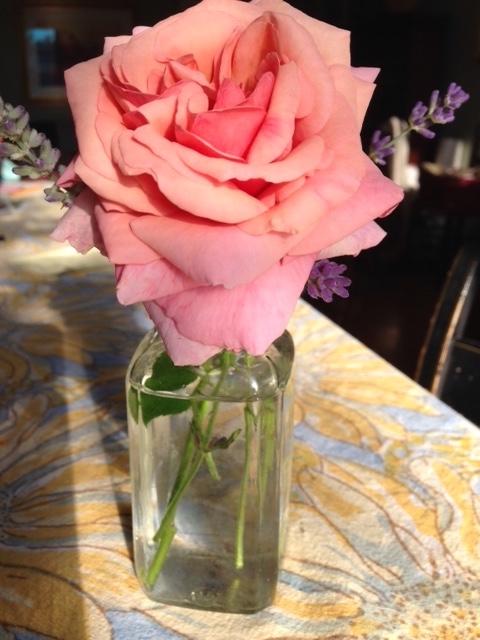 The quintessential rose