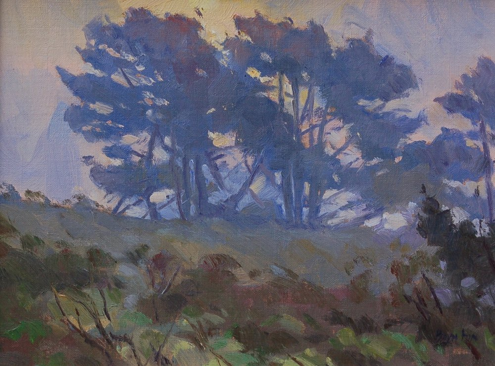Point Reyes Pines, Plein air oil painting by Lee Boynton