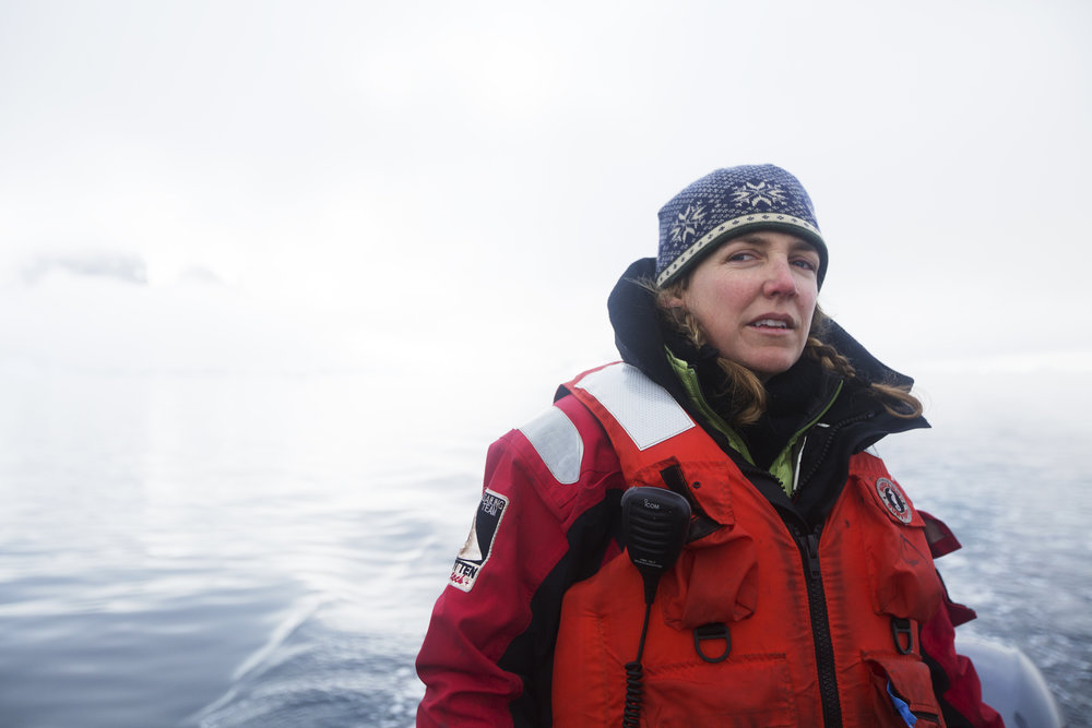 Julia Carleton pilots the zodiac across Andvord Bay.
