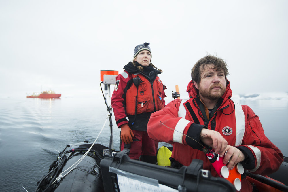 Dave Cade prepares to deploy a suction-cup radio tag on a humpback whale in Andvord Bay, Antarctica | February 2018