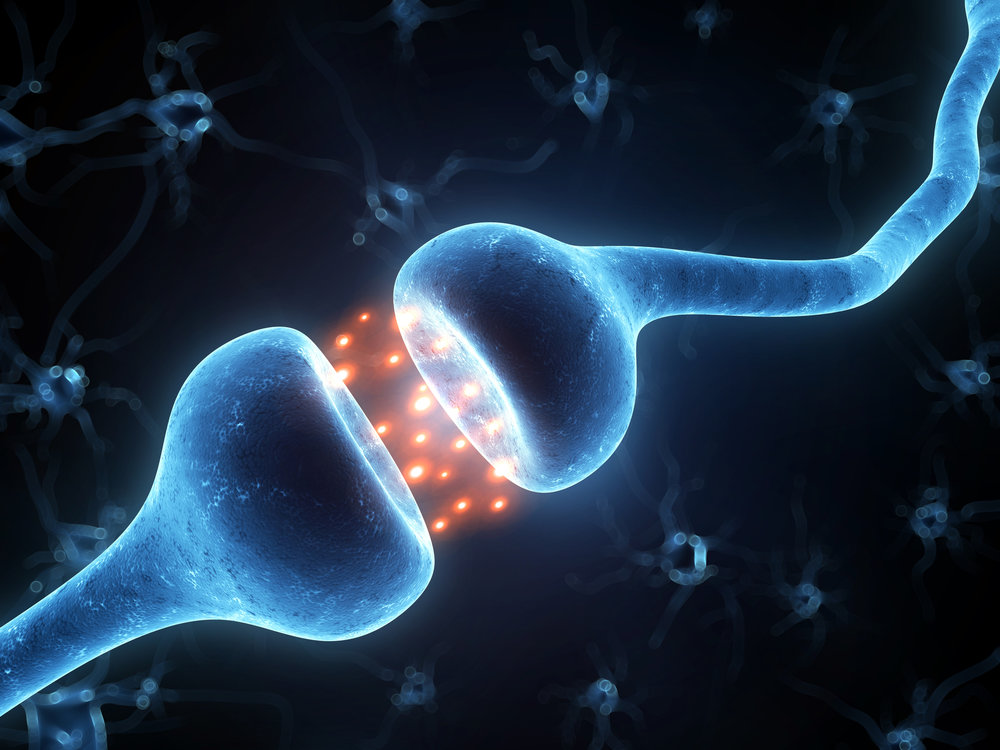 Neurotransmiter testing