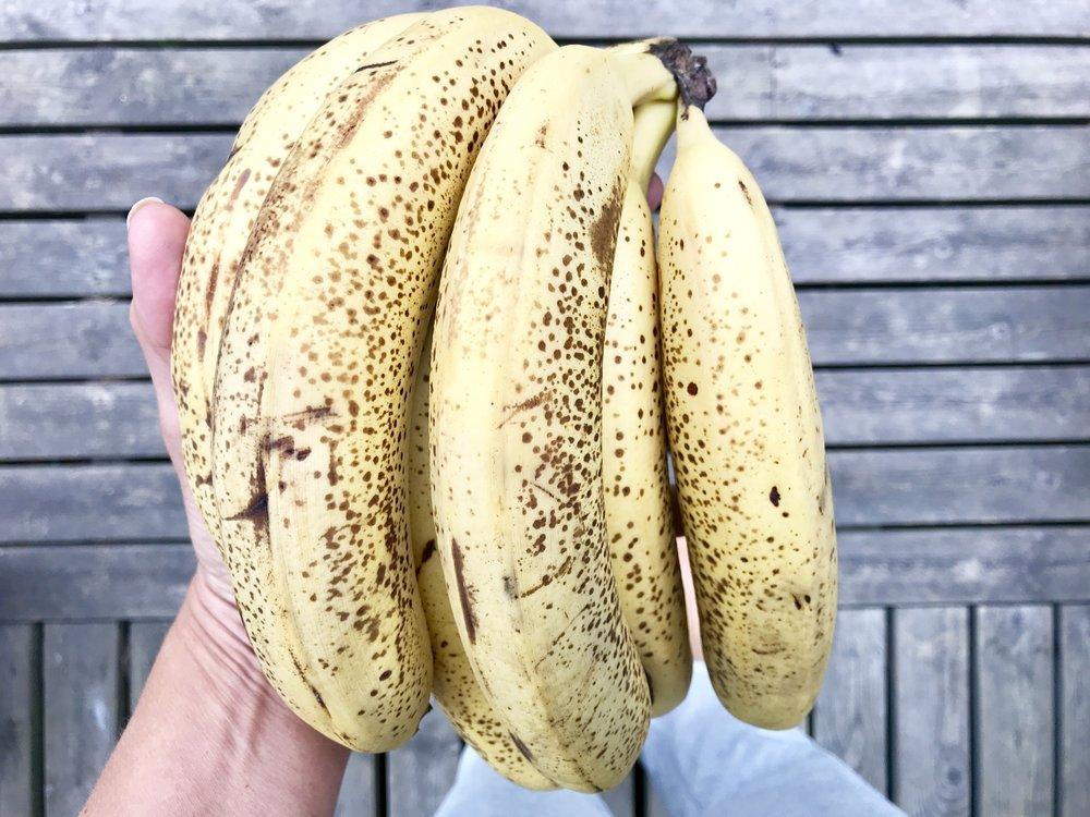 Banaanit ovat vatsaongelmaisten must ruokaa. Kyllä! Ne hoitavat suolistoa ja puhdistavat elimistöä sekä antavat prosessiin tarvittavaa energiaa. Syö banaanit AINA ruskeapilkullisina, ei keltaisina tai raakoina. Silloin ne ovat liian raskaita sulateltavia ja saattavat sen vuoksi aiheuttaa ongelmia.