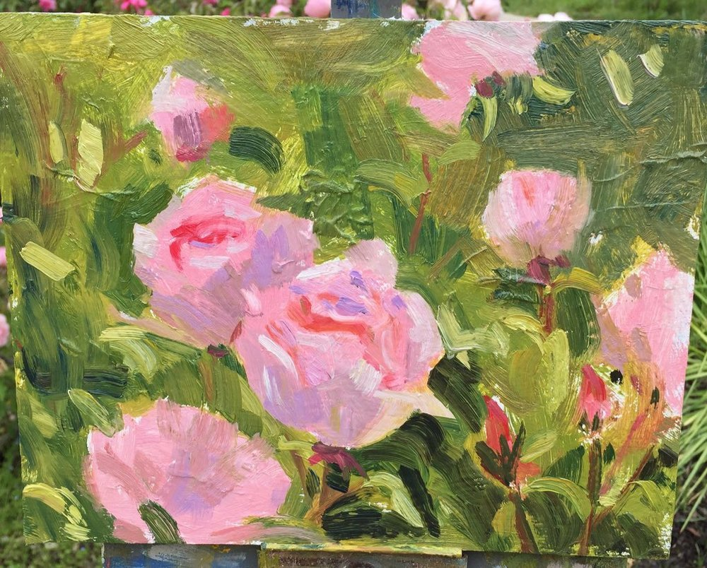 Pink Roses - Sold