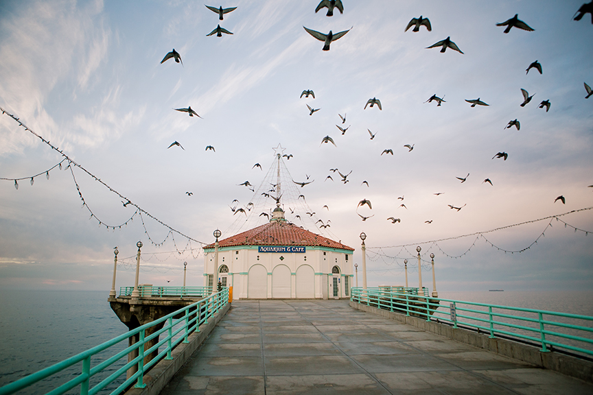 IN FLIGHT - MB PIER