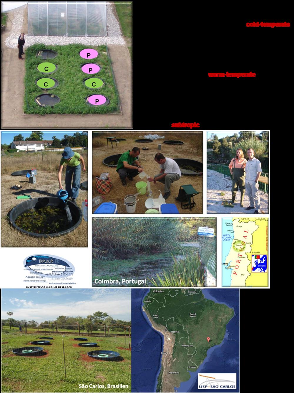 mesocosm facilities in Germany, Portugal & Brazil