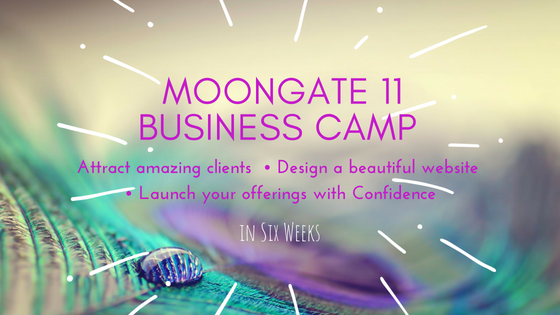 Business CampOn Demand - CLICK HERE to login in to your private member page for Business Camp On Demand