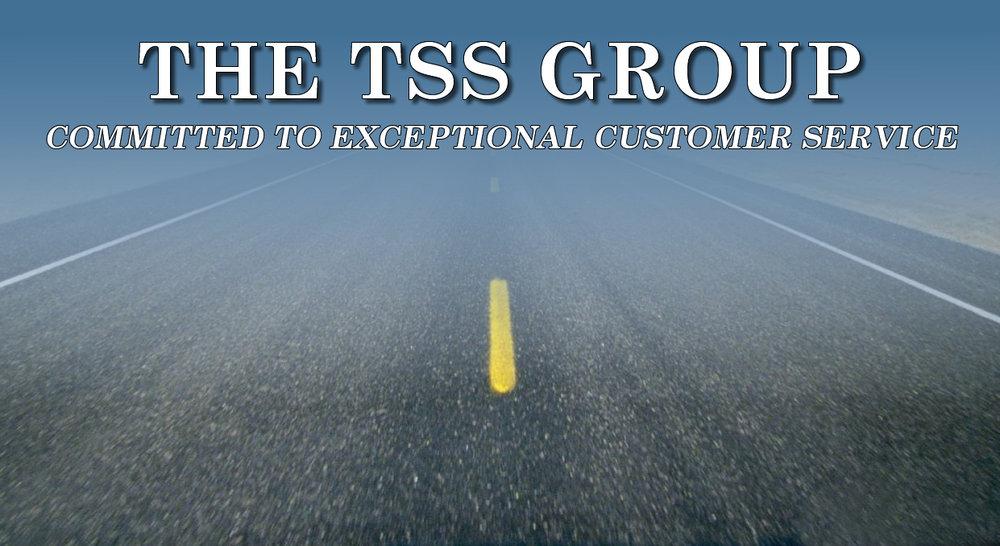 logo tssgroup.jpg