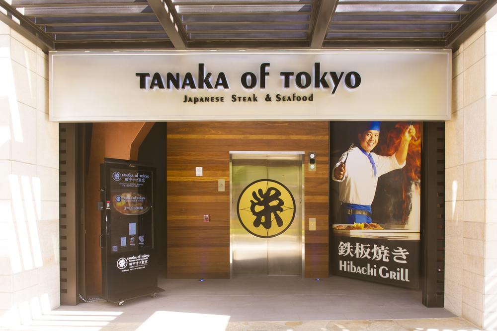 TanakaCTelevator.jpg