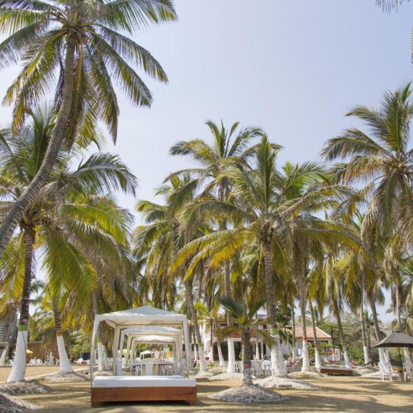 Pasadia-Isla-tierrabomba-tours-en-cartagena-agencias-de-viajes-planes-en-cartagena-1-600x600.jpg
