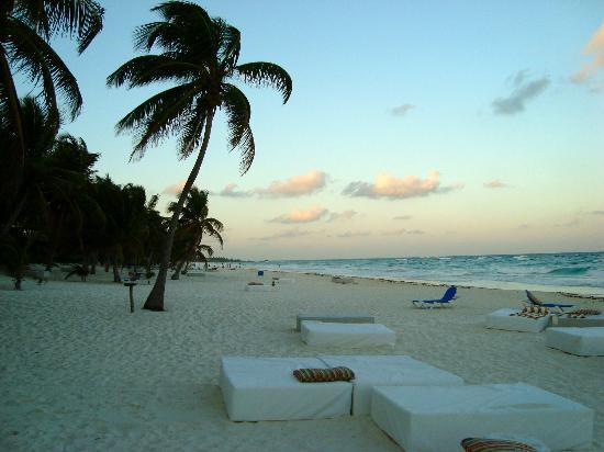 les-fameux-lits-de-plage.jpg