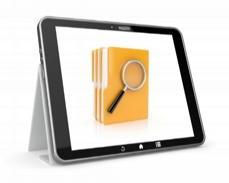 PDF VIEWER -