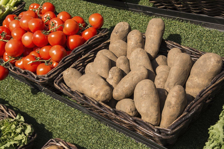 Tomato & Potato Planting Demonstration — Bartlett Arboretum & Gardens