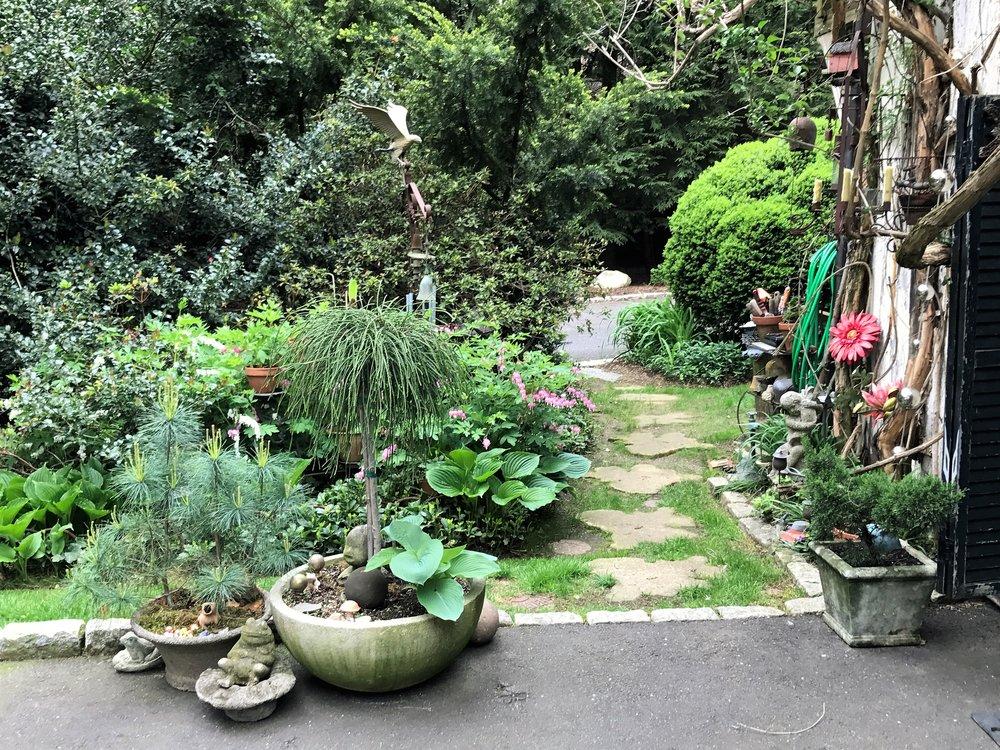 Vinny Garden 2.JPG