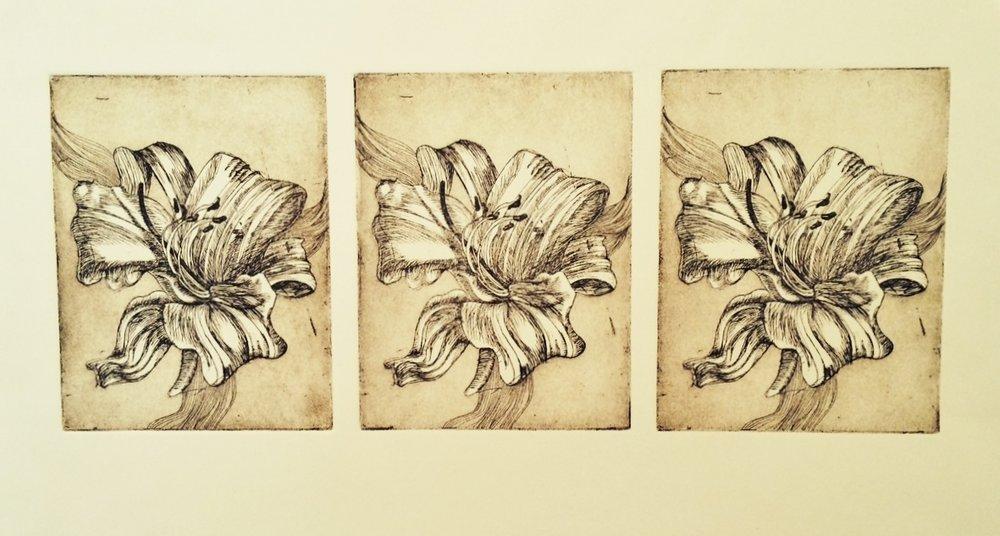 Lily Trio 5x10in (1).JPG