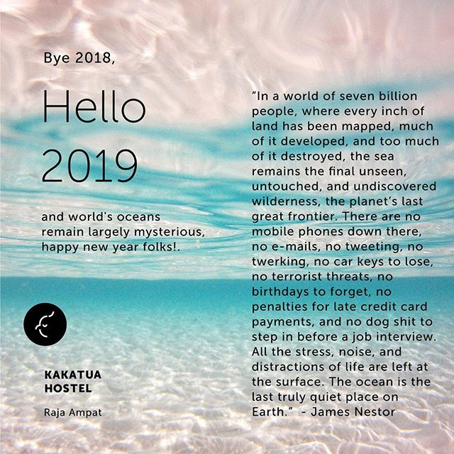Hello 2019, happy new year folks! . . . #CeritaKakatua #KakatuaHostel #WonderfulIndonesia #RajaAmpat #KakatuaTrip #TripRajaAmpat #HostelWorld #BeachLife #Indonesia