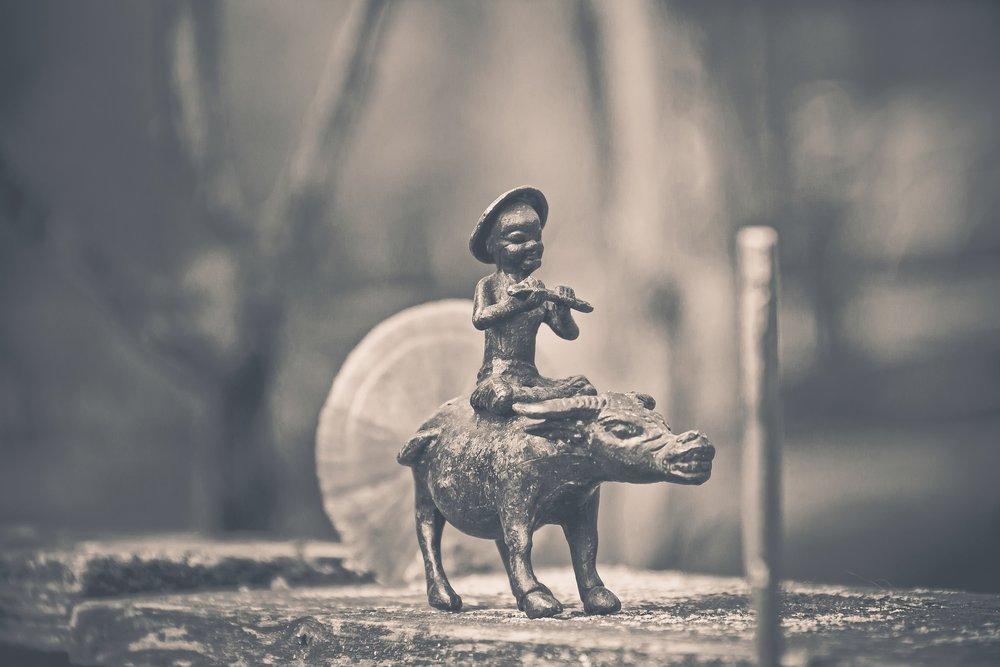 buffalo-rider-2566156_1920.jpg