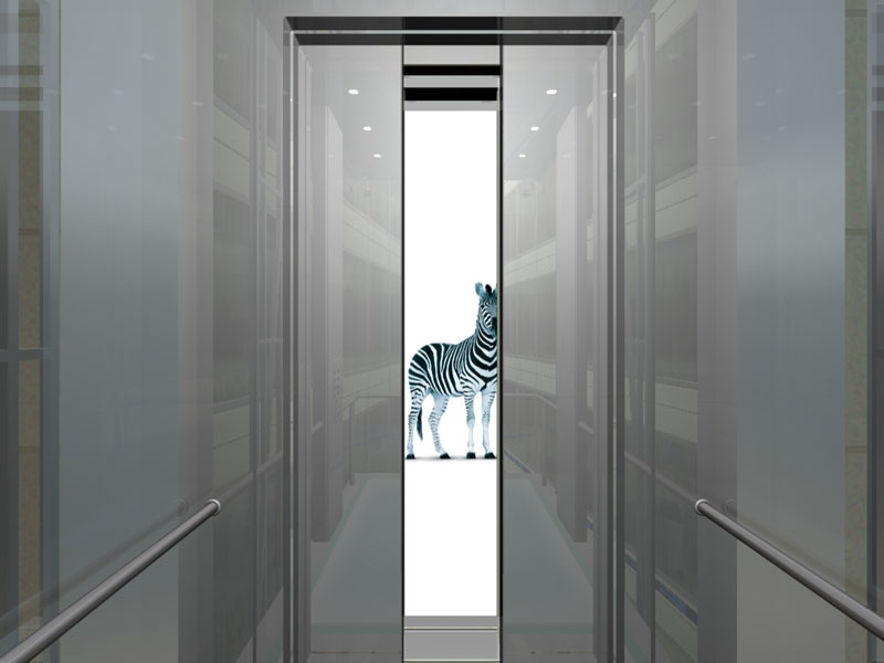 What a new inductee would see when the lift doors opened. The Zebra is the mascot of the Investec Brand and also represents being multicultural.