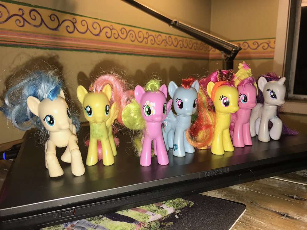 China Rae's ponies