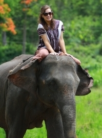 Riding an Elephant in Chiang Mai