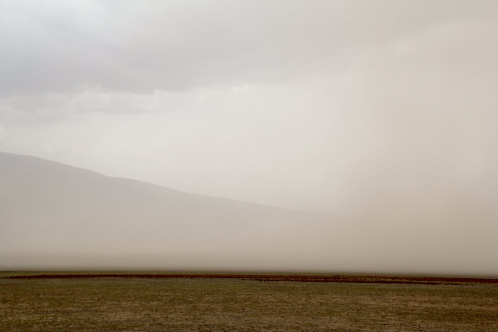 dust storm Serengeti