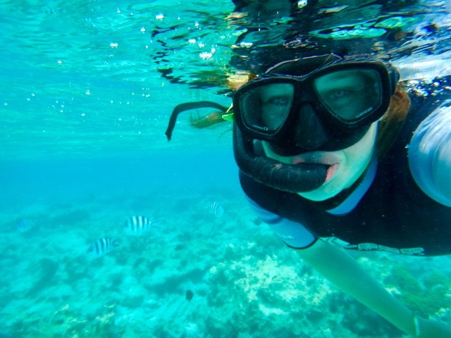 Snorkelling in beautiful blue waters