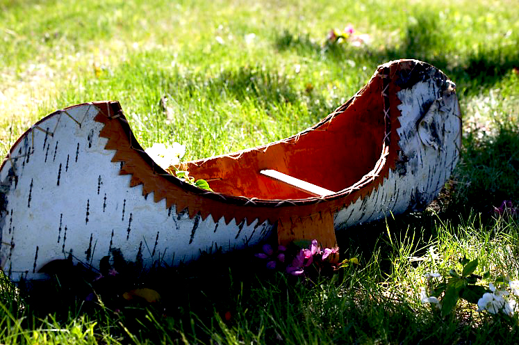 birch canoe.jpg