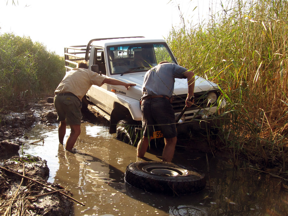 Pickup Toyota Land Cruiser heavily bogged down in the wetlands of the Ugab river.