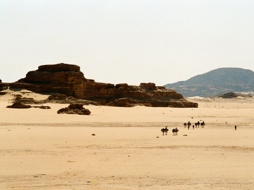 Our camel train trekking through the Eastern Desert towards the Nile
