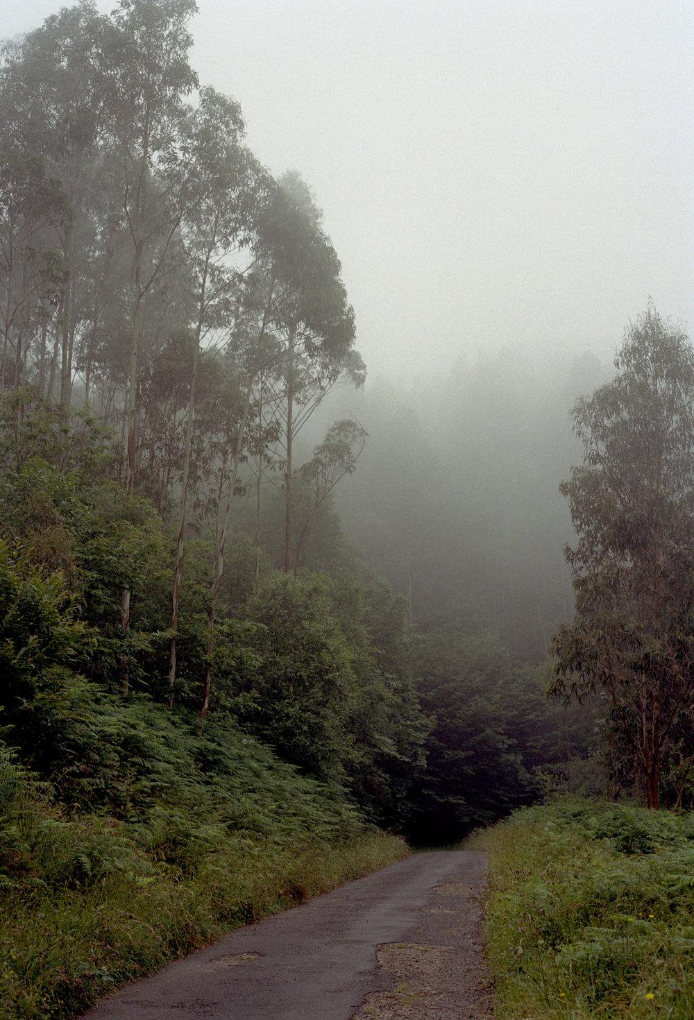 asturias020.jpg