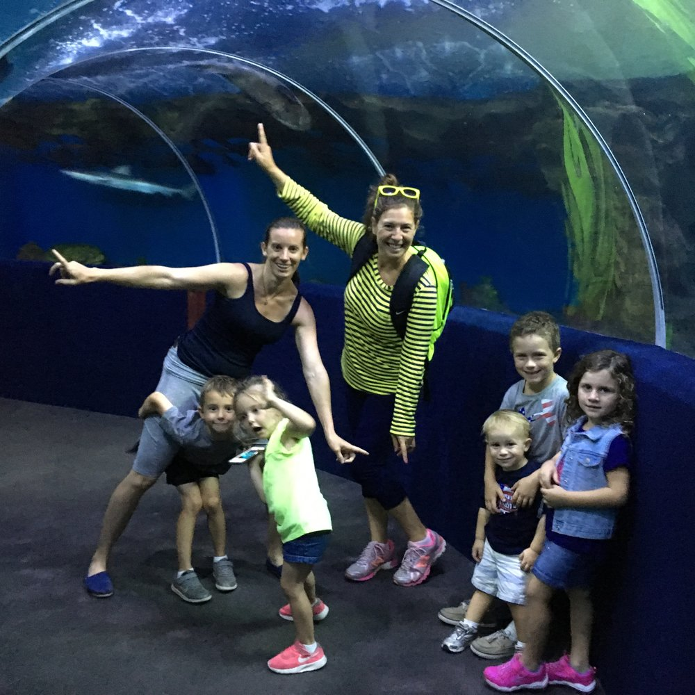McCarthys and Berghoffs hit the aquarium