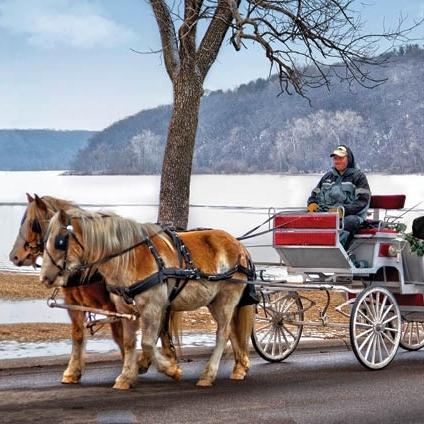 valentine's carraige ride2.jpg