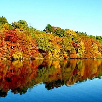 fall_on_river.jpg