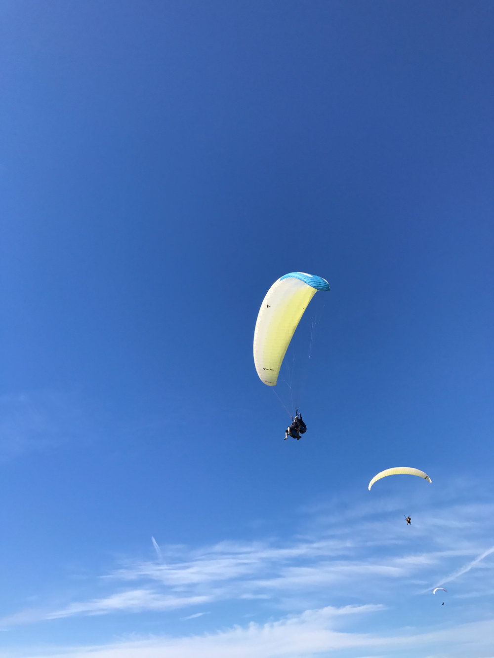 Paragliding above Black's Beach