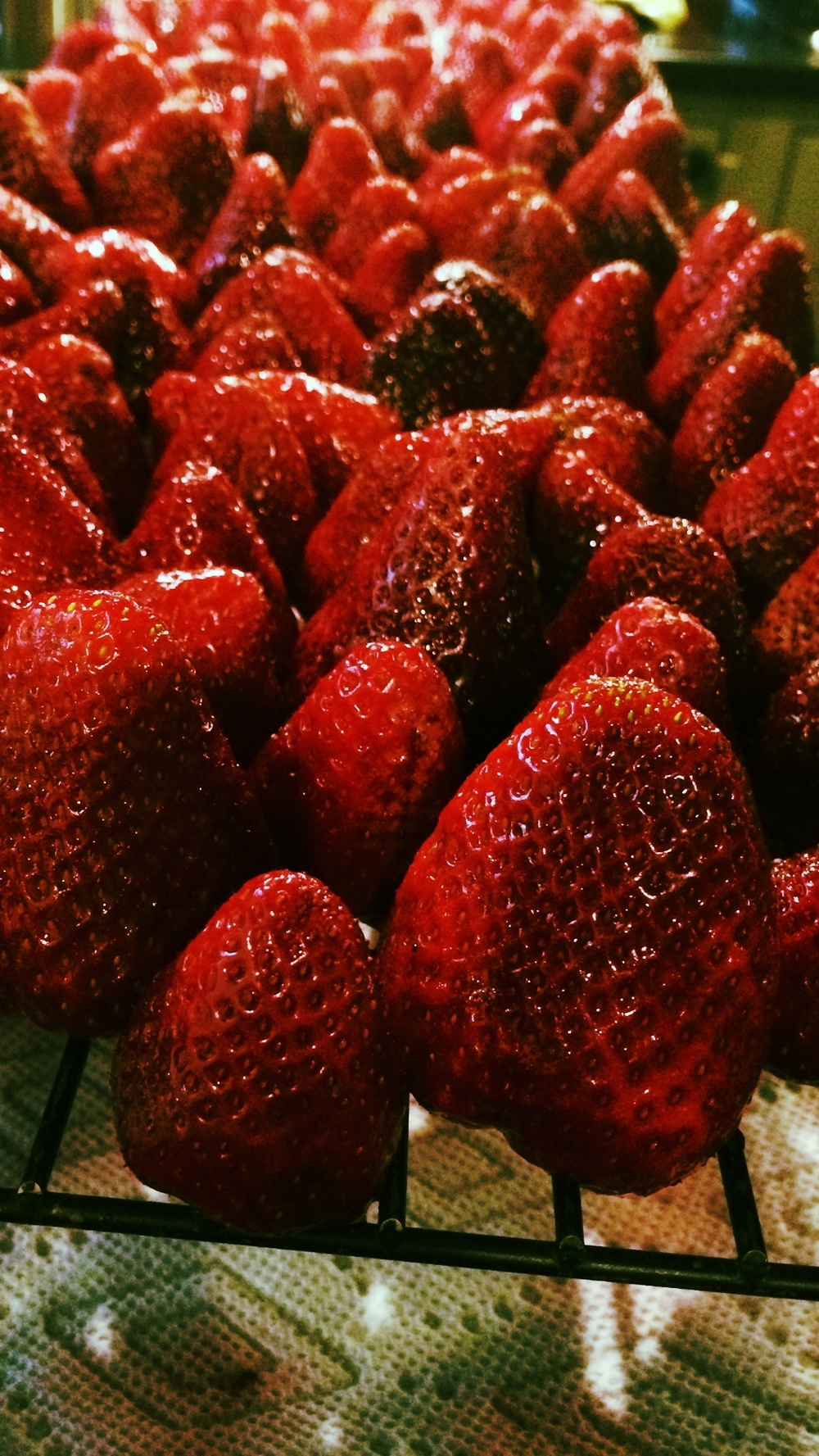 Processing Strawberries