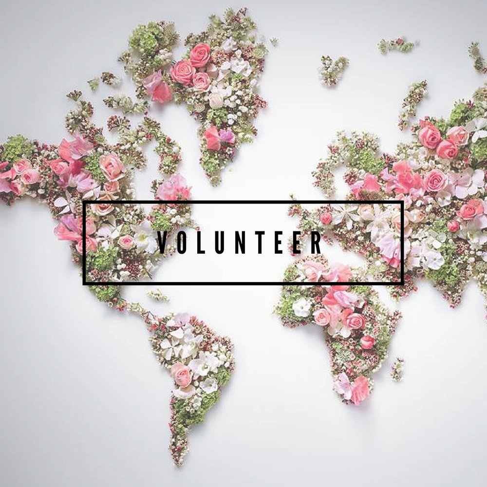 Volunteer (3).jpg