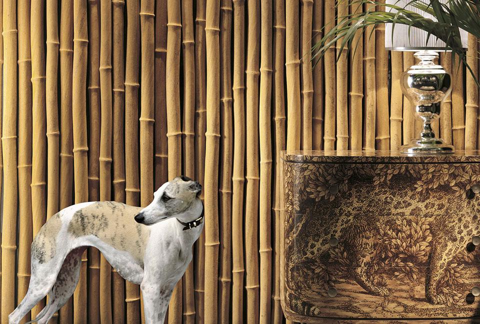 citco02-bamboo