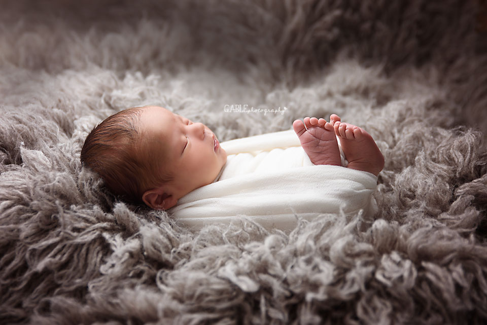 Newborn portrait columbus ohio photograhy studio baby wrapped on grey fur